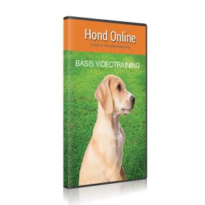 Basis Video Training