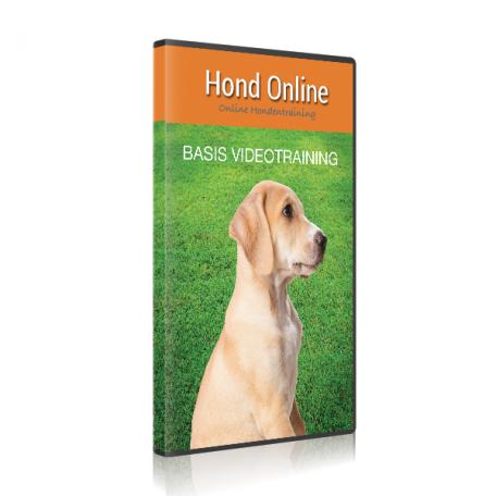 Hondonline – Hoes basis videotraining